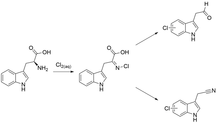 tryptophane reaction